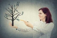 L'albero dei soldi Immagine Stock Libera da Diritti