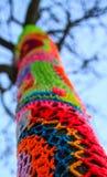 L'albero della lana Fotografia Stock Libera da Diritti