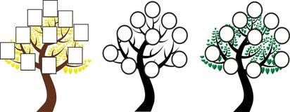 L'albero della vita, albero genealogico Fotografia Stock