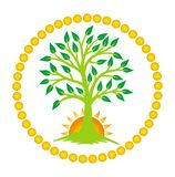 L'albero della vita ed il sol levante nel centro della mandala Vettore Fotografia Stock
