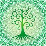 L'albero dentro di vita contro i precedenti quadrati della mandala openwork nei colori verdi fotografia stock
