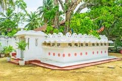 L'albero di Bodhi di Sri Devagiri Viharaya Immagine Stock Libera da Diritti