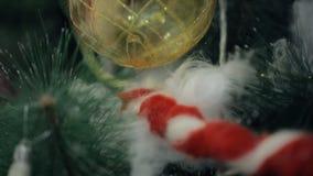 L'albero di Natale è pronto a celebrare il nuovo anno, altre feste archivi video
