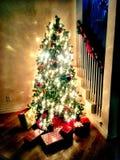 L'albero di Natale Fotografie Stock Libere da Diritti