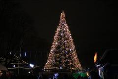 L'albero di Natale decora il quadrato Le palle e le stelle decorano l'albero di Natale Sono intelligenti e variopinte fotografia stock libera da diritti