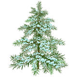 L'albero di Natale di inverno Fotografie Stock Libere da Diritti