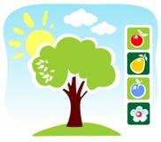 L'albero e la frutta hanno impostato Fotografia Stock