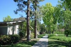 L'albero ha allineato il passaggio pedonale in legno di Laguna, Caliornia Immagine Stock