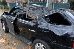 L'albero ha ritenuto giù all'automobile Fotografie Stock Libere da Diritti