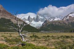 L'albero inaridito contro lo sfondo delle montagne Fotografia Stock