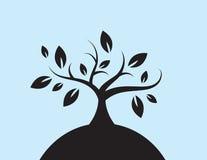 L'albero lascia la siluetta della collina Fotografia Stock