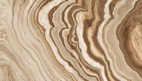 L'albero pianta il fondo Fotografia Stock