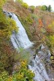 L'Albione cade in autunno 2 Fotografie Stock Libere da Diritti