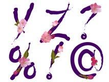 L'alfabeto della sorgente con i fiori segna Y, la Z ed i segni con lettere Fotografia Stock Libera da Diritti