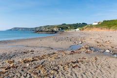 L'algue sur Kennack ponce la plage les Cornouailles Angleterre R-U Images libres de droits