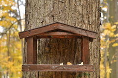 L'alimentatore dell'uccello Fotografia Stock Libera da Diritti