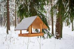 L'alimentatore dell'uccello sul ramo ha mangiato sotto neve sul fondo della foresta dell'inverno immagine stock