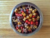 L'alimentazione del cane Fotografia Stock