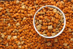 Alimento per animali domestici nel piatto del cane Fotografie Stock Libere da Diritti