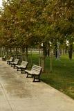 L'allée avec des bancs en parc Image stock