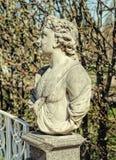 L'allégorie du buste de mai dans Catherine Park dans Tsarskoye Selo Images libres de droits