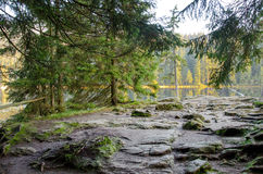 L'Allemagne, lac Arbersee Image stock