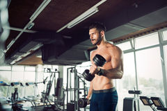L'allenamento muscolare del culturista in palestra che fa il bicipite si esercita Immagini Stock