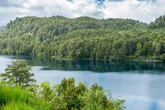 L'allerta del lago Correntoso Immagine Stock Libera da Diritti