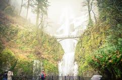 L'allerta principale del tono d'annata di Multnomah ghiacciato cade l'Oregon nel winte fotografia stock