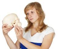 L'allievo guarda il cranio umano di plastica Fotografie Stock