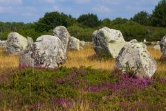 L'allineamento a Bretagna, Francia Fotografia Stock