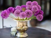 L'allium fiorisce il mazzo in un vaso decorativo alla moda Fotografia Stock