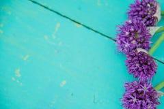 L'allium fiorisce il mazzo in un vaso decorativo del metallo alla moda Profondità del campo poco profonda Immagine Stock