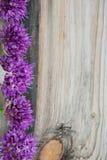 L'allium fiorisce il mazzo in un vaso decorativo del metallo alla moda Profondità del campo poco profonda Immagini Stock
