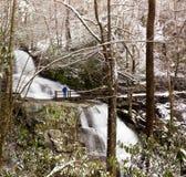 L'alloro cade in montagne fumose in neve Fotografie Stock