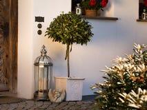 L'alloro standard si rasserena - l'entrata principale insieme alla decorazione domestica Immagini Stock