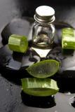 L'aloe affettato va con olio sulla pietra Fotografia Stock Libera da Diritti