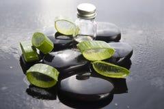 L'aloe affettato va con olio sulla pietra Fotografia Stock