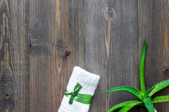 L'aloe fresco vera copre di foglie sul copyspace di legno di vista superiore del fondo Fotografia Stock Libera da Diritti