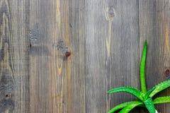 L'aloe fresco vera copre di foglie sul copyspace di legno di vista superiore del fondo Fotografie Stock