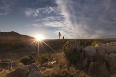 L'aloe sulle rocce della montagna abbellisce il tramonto con i cieli nuvolosi Immagini Stock