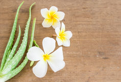 L'aloe vera ed il frangipane fioriscono sulla tavola di legno Fotografia Stock Libera da Diritti