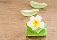L'aloe vera ed il frangipane fioriscono sulla tavola di legno Immagini Stock Libere da Diritti
