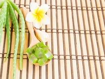 L'aloe vera ed il frangipane fioriscono sulla tavola di legno Fotografie Stock