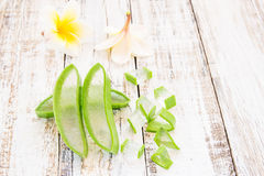 L'aloe vera ed il frangipane fioriscono sulla tavola di legno Fotografia Stock