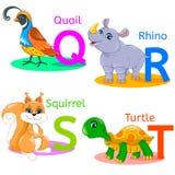 L'alphabet badine les animaux QRST Image libre de droits
