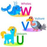 L'alphabet badine les animaux UVW Photographie stock