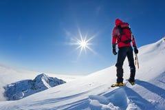 L'alpinista raggiunge la cima di una montagna nevosa in un winte soleggiato Fotografia Stock Libera da Diritti