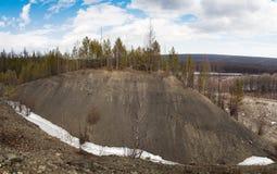 L'alta collina con gli alberi Fotografia Stock