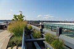 L'alta linea, conosciuta come l'alta linea parco, ha elevato il parco lineare Immagini Stock Libere da Diritti